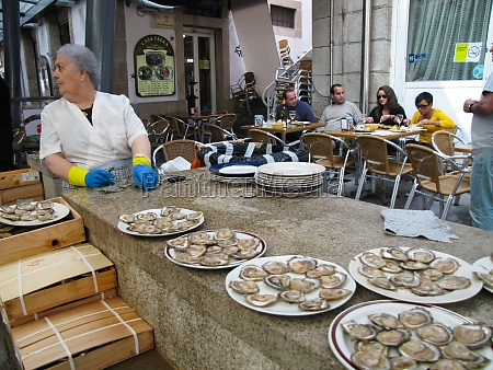 dish of scallops shells in food