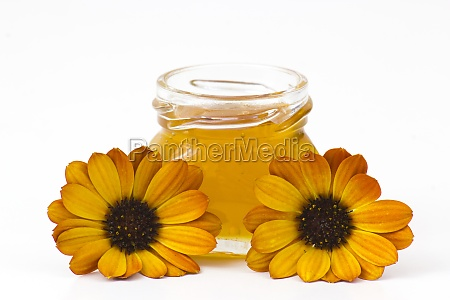 honey and flowers on white