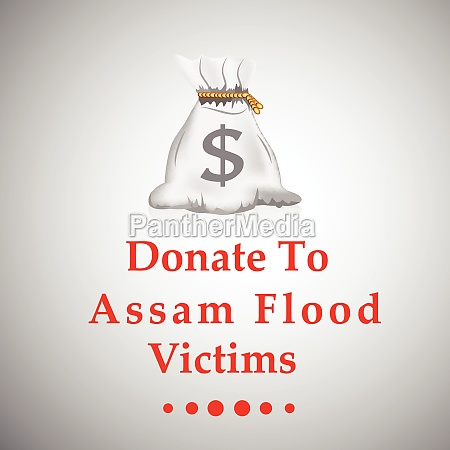 assam flood calamity