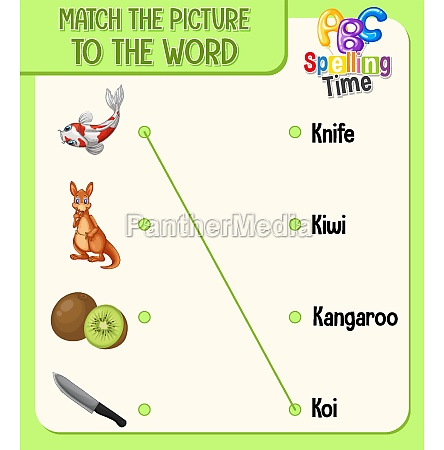 match the picture to the word