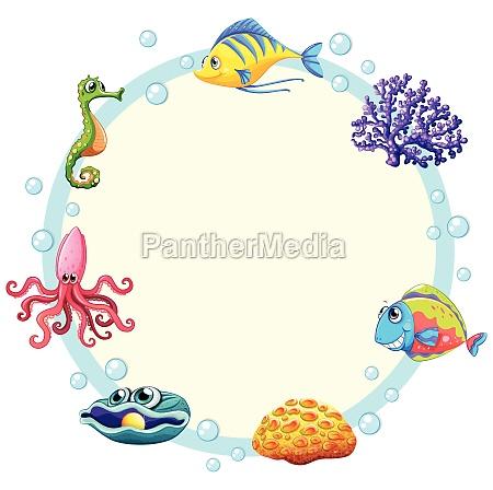 cute sea creature border
