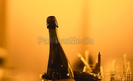 bottle of champagne in warm light
