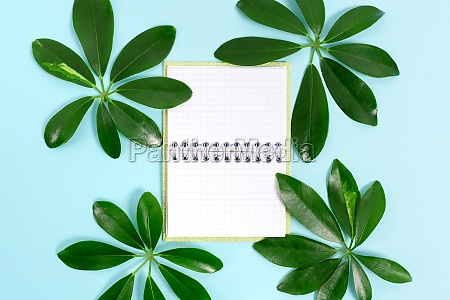 creating nature theme blog content preventing