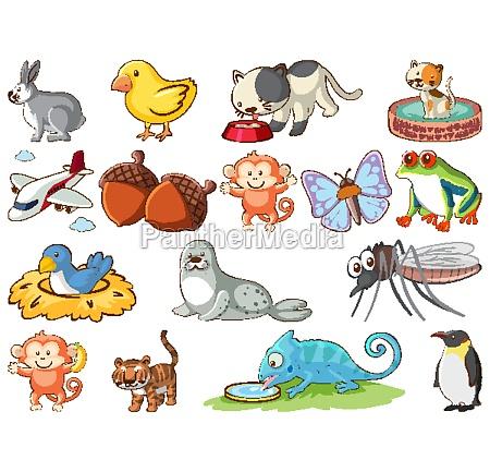 large set of wildlife with many
