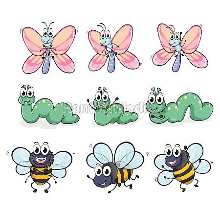 a caterpillar a butterfly and a