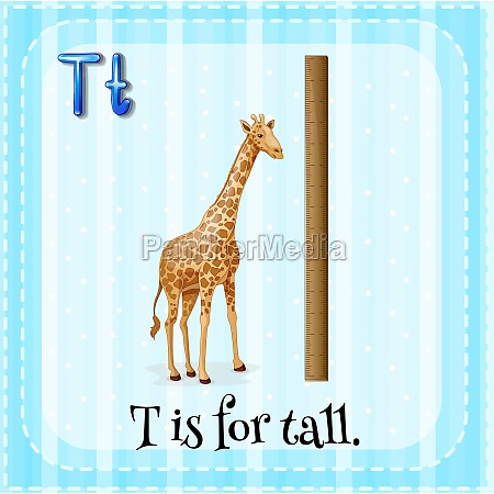flashcard letter t is for tall