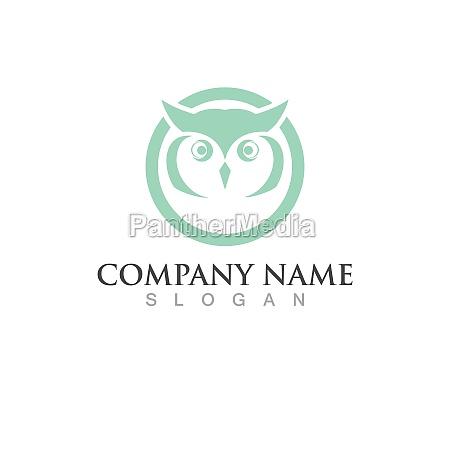 owl head logo and symbol vector