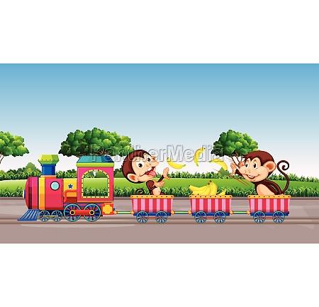 monkey riding a train