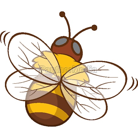 cute bee on white background