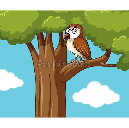 owl standing on branch