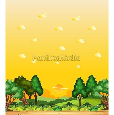vertical nature scene or landscape countryside