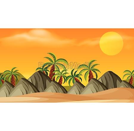 beach outdoor wallpaper scene