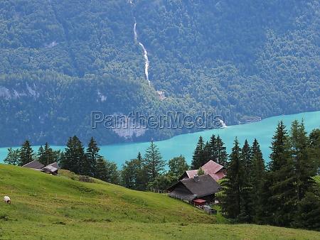 lake brienz and giessbach falls seen