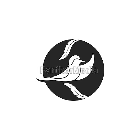 bird vector illustration designbird vector illustration