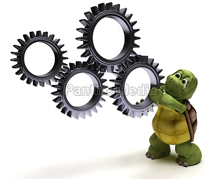 tortoise with gears