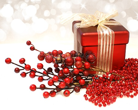 christmas gift and berries
