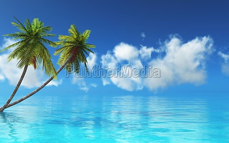 3d tropical landscape with palm trees