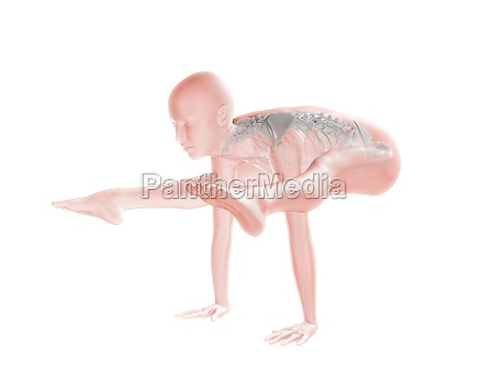 3d female figure with skeleton in