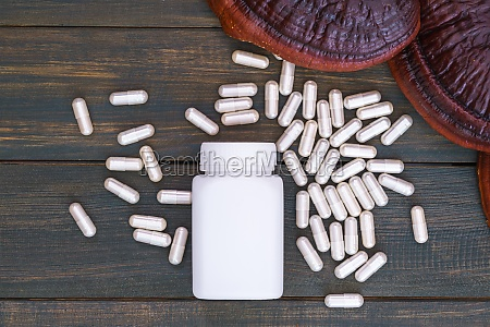 ling zhi mushroom and capsule with