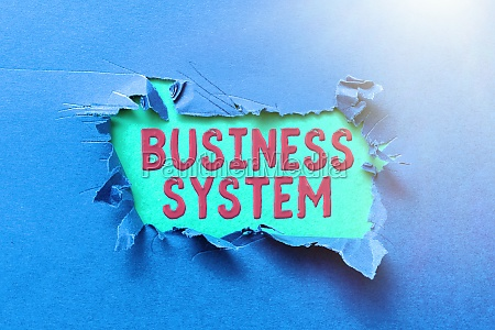 text caption presenting business system concept