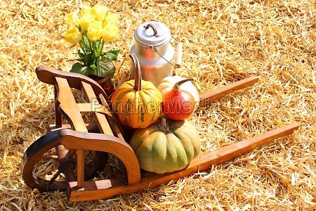 beautiful pumpkin decoration