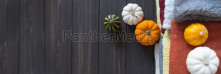 autumn background with a variety of