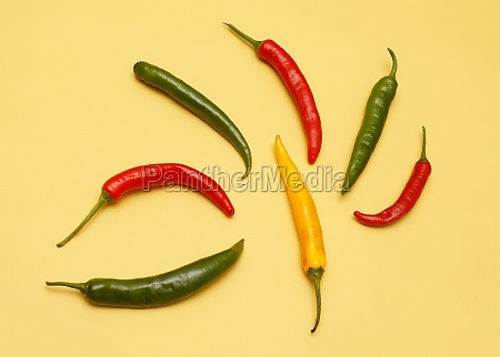 colorful spicy peppers isolated