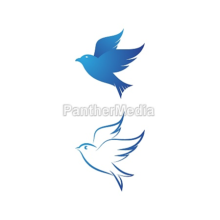 bird wing dove icon template