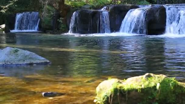 pool green stone beautiful nature fresh