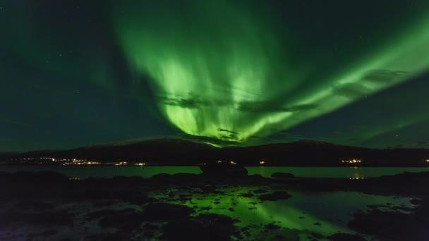 green lights sky nature water light