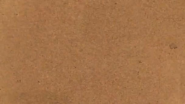 Video B190146338