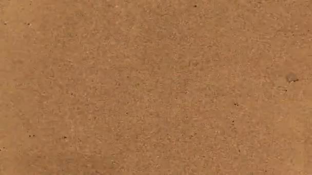 Video B190451376