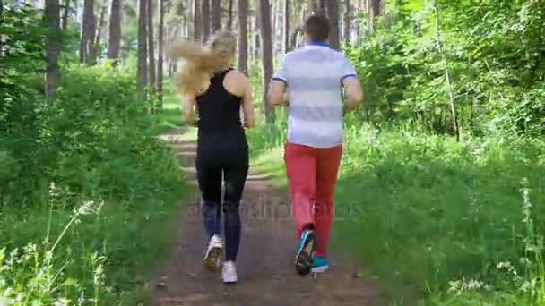 Video B161484784