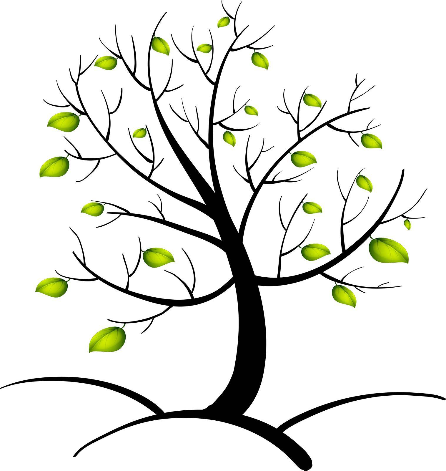 illustration, isolated, clipping path, tree, fall, spring - D37176504