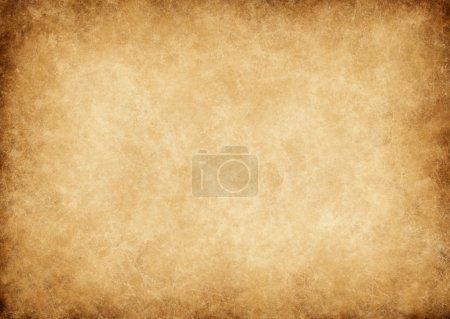 Media-id B24493081