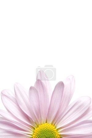 Media-id B28599649