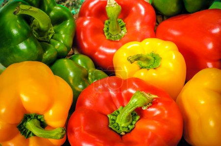 green, color, red, yellow, group, background - B18904771