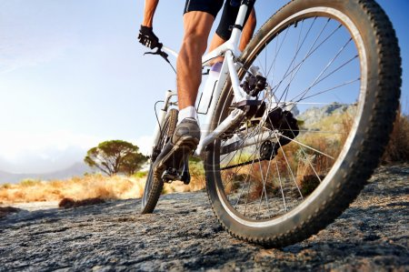 sport, leisure, activity, fun, on, design - B28403469