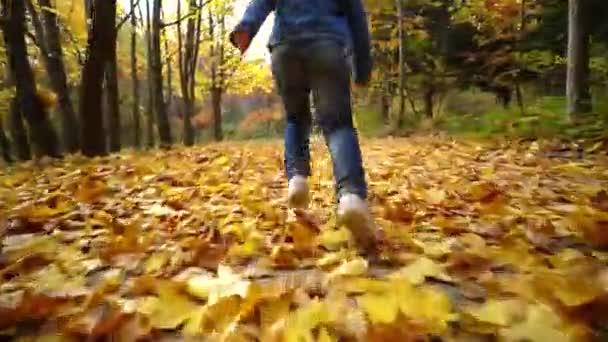Video B415009832