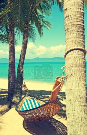 sky beautiful holiday travel palm summer