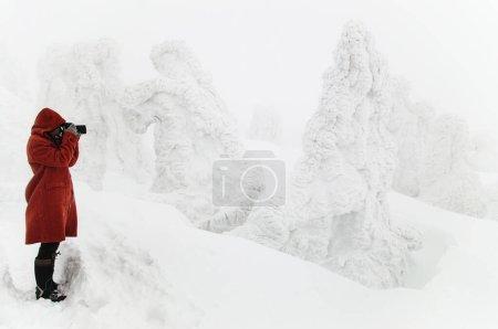 photography beautiful travel park natural mountain