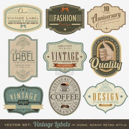 vector element illustration design set decoration