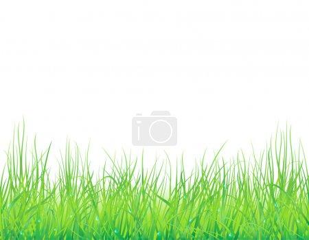 Media-id B4809166
