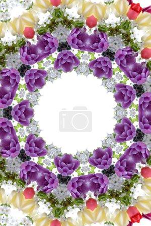 Media-id B4806479