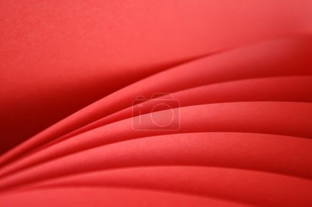 color red background close up macro