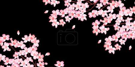 Media-id B95556486