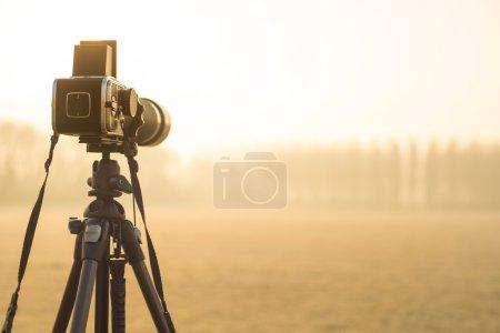 Media-id B97005300