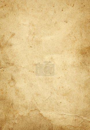 Media-id B7825231